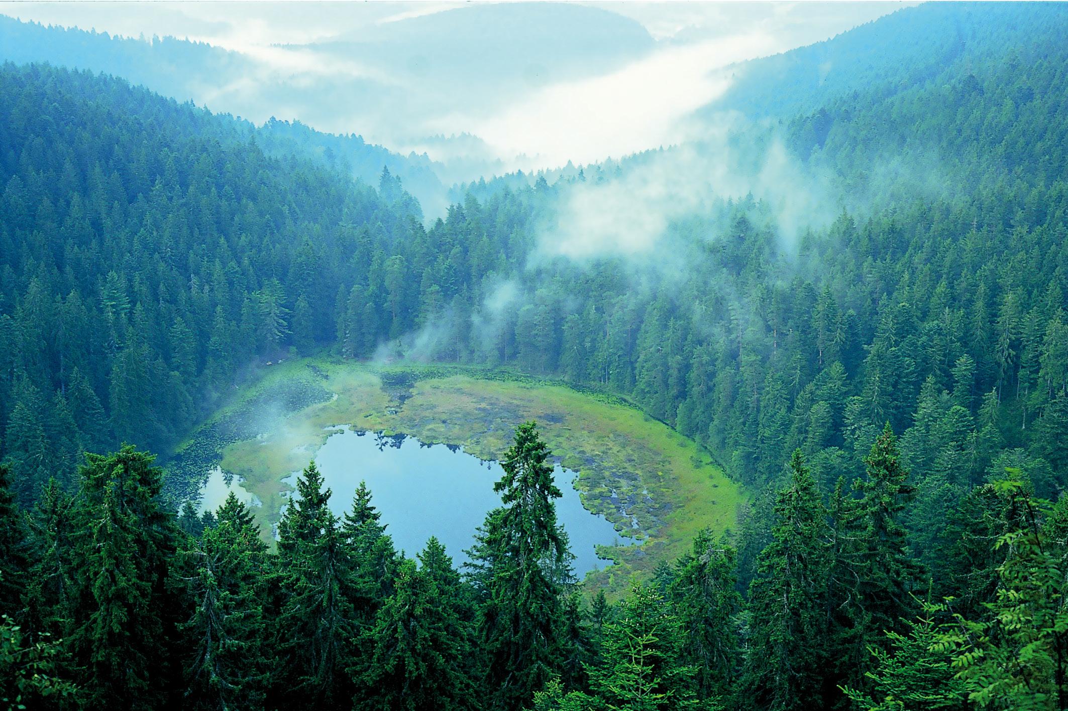 """Karseen, die """"Augen"""" des Schwarzwalds"""