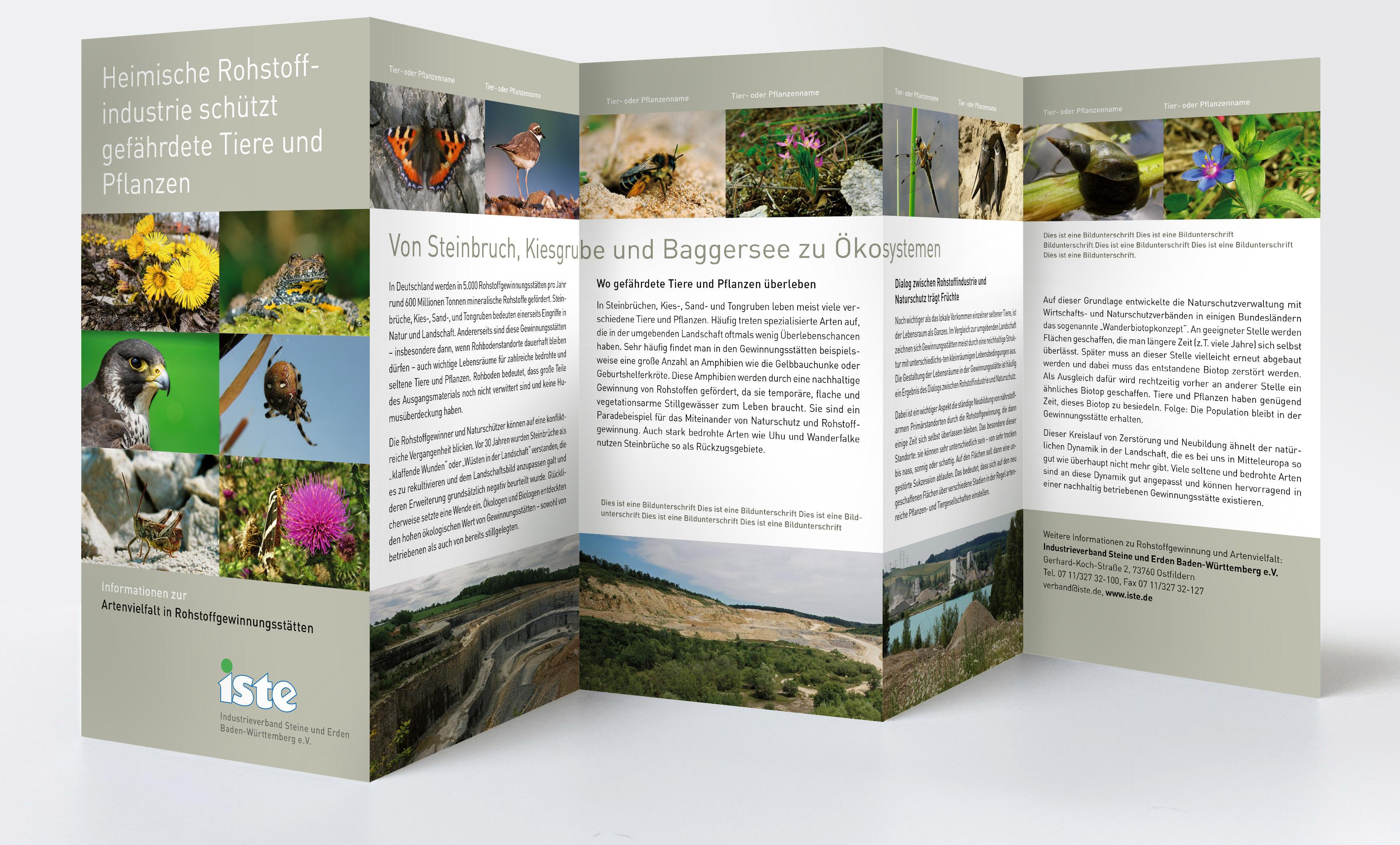 Die andere Seite des Flyers: Artenvielfalt in Rohstoffgewinnungsstätten